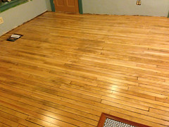 finished floor (elizajanecurtis) Tags: home kitchen maple renovation refinishing homeimprovement woodfloor limington kitchenfloor maplefloor