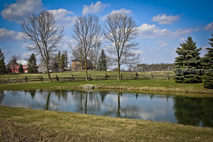 It's Worth the Drive to Acton! (A Great Capture) Tags: trees sky ontario canada reflection nature spring pond erin acton springtime on ald ash2276 ashleyduffus itsworththedrivetoacton