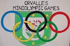 orvalle-miniolimpiadas 2013 (15)