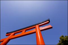 Torii in red under a blue Kobe sky (Eric Flexyourhead (Trying to catch up!)) Tags: blue red sky japan gate shrine vibrant vivid clear kobe  shinto kansai torii  hyogo chuoku  ikutajinja  ikutashrine   kobeshi  panasoniclumix714mmf40 olympusem5