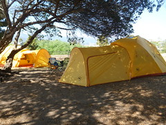 Big House Double (fordsbasement) Tags: camping tent carpenteria