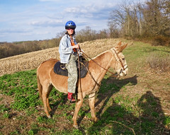 Me and Opal (Mulewings~) Tags: me spring ride hubby mules peewees muleride lookingforflowers mulephotography peeweesvalley