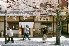 Arashiyama, Japanese really like sakura, u can see sakura tree almost everywhere even the flowers can only survive for 7 days!!! (tinanthony) Tags: contax 200 g1 planar g45 colorplus