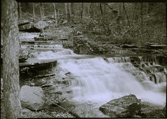 Collins Creek Spring (robertlhinson) Tags: paper heber mg springs arkansas ilford 5x7 homemadecamera ilex170mm