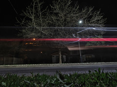 El rbol de la esquina (Mar Cifuentes) Tags: arbol tree ciudad calle street longexpo largaexposicin luces noche night fotografianocturna