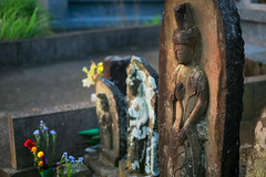 Offering (sonica@2006) Tags: offering is it jizo grave a flower was offered neatly very good japan chiba xm1 xf35mm fujifilm fujinon