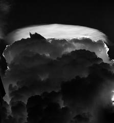Sky Series - Coral Gables | 160822-0159-jikatu (jikatu) Tags: bw atmosfera atmosphere cielo clouds hat jikatu miami nubes sigma sky sombrero
