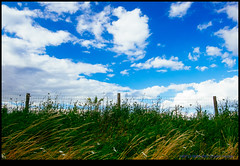 160713-9654-XM1.jpg (hopeless128) Tags: france sky eurotrip 2016 fence clouds nanteuilenvalle aquitainelimousinpoitoucharen aquitainelimousinpoitoucharentes fr