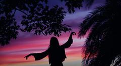 228/366: feelin' good (Andrea  Alonso) Tags: me selfportrait autorretrato 366 365 contrast contraste atardecer sunset light colors sombra