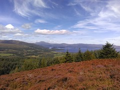 Loch Lomond, viewed from Gouk Hill, Bannachra Muir (luckypenguin) Tags: scotland helensburgh balloch johnmuirway lochlomond loch heather