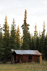 The Cabin in the Woods (demeeschter) Tags: canada yukon territory klondike highway lake mountain scenery landscape nature wildlife fire forest river minto resort bald eagle dawn sunrise