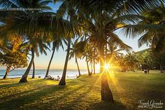 - Grande Anse - (Frog 974) Tags: ledelarunion ngc coucherdesoleil plage cocotier palmier paradis paradisiaque carte postale rve