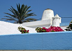 nota di colore (silvia07(very busy)) Tags: bougainvillea nota colore bianco color azzurro cielo sky summer estate terrazza greece
