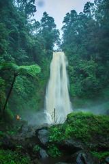 Gitgit Waterfall #2 (Budi As (Bilik Bidik)) Tags: bali nature waterfall gitgit airterjun buleleng sukasada