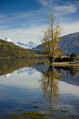 Mt Aspiring (DarrynSantich) Tags: autumn newzealand lake mountains beauty reflections peaceful calm alpine nz southisland calmness mountaspiring mtaspiring glendhu glendhubay