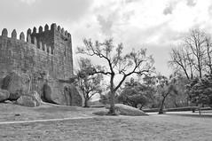 Tree (José Luis Moyano) Tags: