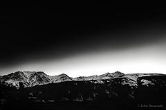 ridge at dawn (john dusseault) Tags: bw kananaskis rockies dawn silverefexpro