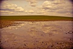 DSC_4352.jpg (budbrain) Tags: blackandwhite bw cloud tree nature monochrome clouds way landscape nikon path wolken minimal josef j1 rheinlandpfalz 10mm sejrek budbrainde josefsejrek