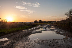 it was getting late so we went back home (Yoni Lerner) Tags: road winter sunset sky sun rain puddle