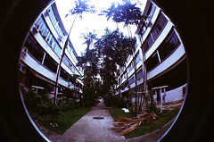 Tiong Bahru Estate (raspberry dolly) Tags: lomography singapore fisheye tiongbahru lomofisheye