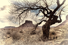 A Timeless Natural Frame (Jeff Clow) Tags: nature landscape utah moab timeless professorvalley theriverroad tpslandscape