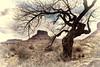 A Timeless Natural Frame (Jeff Clow) Tags: nature landscape utah moab timeless professorvalley theriverroad tpslandscape
