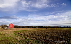 Augusta Michigan Fields and Barn (Michigan Transplant) Tags: blue red sky green rot grass clouds barn landscape corn michigan farm felder wideangle tokina fields augusta blau pastoral landschaft bauernhof scheune 1116mm