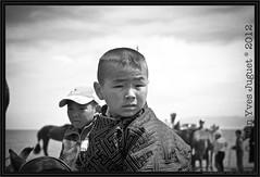 Portraits de Mongolie - Portraits of Mongolia ( Jean-Yves JUGUET ) Tags: travel portrait horses horse landscape cheval mongolia chevaux ger yourte