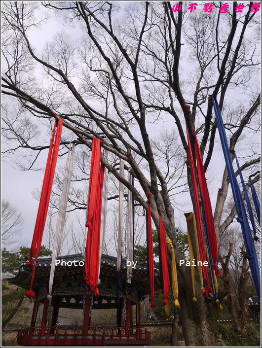0403韓國民俗村 (51).JPG
