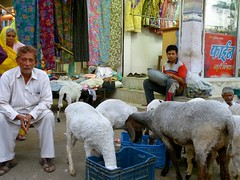 "mercado Bundi • <a style=""font-size:0.8em;"" href=""http://www.flickr.com/photos/92957341@N07/8677655514/"" target=""_blank"">View on Flickr</a>"