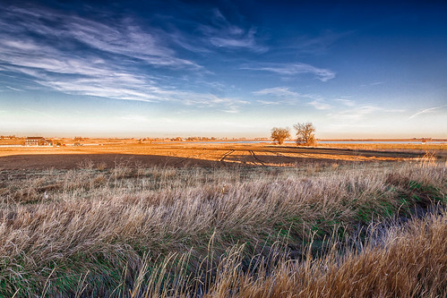 The field east of Roger's place by SammCox, on Flickr