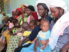 Niger: reinforcing nutrition care in Tahoua district (EU Humanitarian Aid and Civil Protection) Tags: niger sam hunger drought westafrica unhas nutrition sahel malnutrition foodcrisis undernutrition severeacutemalnutrition nutritioncare creni nutritioncrisis