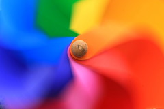 Moving colors (RosLol) Tags: colors moving rainbow colorful pinwheel colori whirligig girandola roslol mygearandme