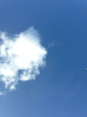 Eighty eight. A day for cloud watching (sarahjanequinn) Tags: blue sky cloud iphone project365