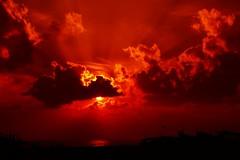 Sunrise Charm