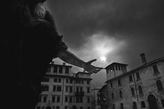The Hand of the Angel... (fabio6065) Tags: bw italy italia bn verona duomo biancoenero angeli veneto stealingshadows