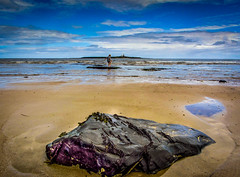 Amble-14.jpg (pjstout) Tags: england unitedkingdom amble