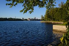 DSC_6324 (vargandras) Tags: lake sunset city cityscape tree lakeshore hatanp tampere suomi finland
