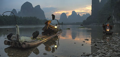 The gathering (ANOTHER DAY AT THE OFFICE) Tags: cormorant fishermen xingping yangshuo li river lijiang panorama birds sunset karst nature bamboo raft reflection