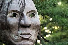 Face at Minnehaha (LouLou'sLoves) Tags: face wood green minnehaha minnesota trees pine