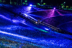 2016.Aug nightscape @Keelung,Taiwan (http://becky-photo.com) Tags: keelung nightscape travel photography    art bottles light night nightphotography nightview color taiwan