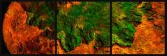 20160816 WoutvanMullem Drieluik Maan Etalage 7-2 (Wout van Mullem) Tags: kunst de etalage zuidhorn wout van mullem kleurrijk boomschors roest rust drieluik tryptich triptiek