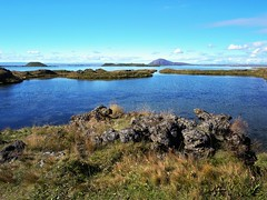 Mvatn (Ondrej V.) Tags: myvatn iceland lake water landscape outdoor panasonicdmcg5 shore