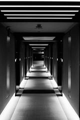 """""""Corridor"""" #architecture #modern #flickr #blackandwhite #europe #bnw #monochrome #photography #weekend #turkey #flickrturkey #swisshotel #izmir #lights #dark #white #room #corridor (cemmutlu) Tags: architecture modern flickr blackandwhite europe bnw monochrome photography weekend turkey flickrturkey swisshotel izmir lights dark white room corridor"""