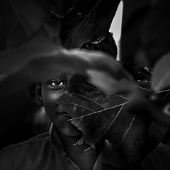 Portrait (Vilvesh) Tags: cwc chennaiweekendclickers portrait boy face bw monochrome nikond750 nikon24120 eye thirukalukundram village chennai tamilnadu leaves life smile