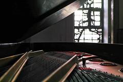 DP2M5233_DxO (kevinkilian91) Tags: steinway d d274 grand piano flgel