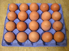 Piggotts Riverside Poultry Farm 20 Large Hen Eggs 2 x 3.39 13092016 29-08-2016 - Box 1- Egg Weights (Lord Inquisitor) Tags: piggotts hen eggs large heneggs eggcarton 13092016
