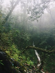 IMG_9138 (Seif Sallam) Tags: travel vietnam sapa fansipan hiking trekking