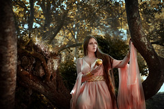 Apple of Discord: Aphrodite (Arianna Ceccarelli Photography) Tags: conceptual portrait fine art fineart beautiful aphrodite greek myth surreal fantasy people girl woman gold dress styling makeup makeupartist