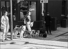 Walking The Dogs (Mabacam) Tags: 2016 london eastend shoreditch mannequin wall streetart urbanart publicart dogwalker dogs street streetscene bw blackandwhite monochrome